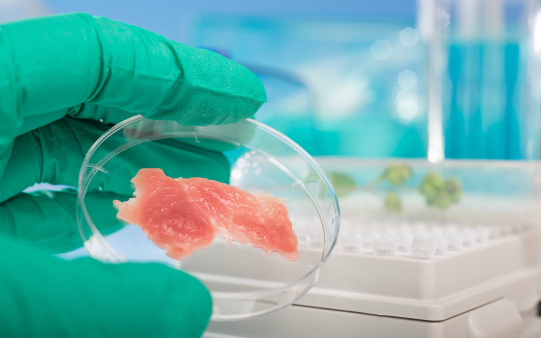 FDA Publishes Request for Comment for Cell-Cultured Seafood Products